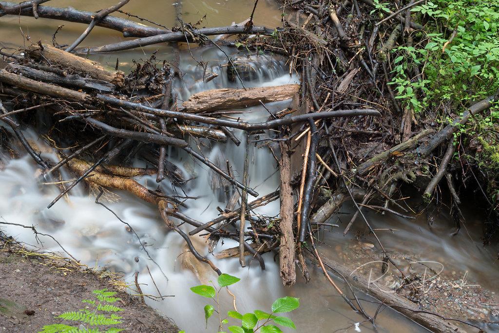 Fototour Hörschbachwasserfälle 2014